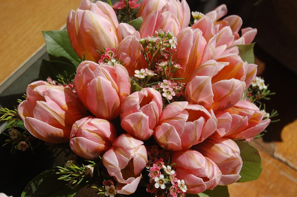 Flower, Nature, Garden, Leaf, Floral, Bouquet De Fleurs