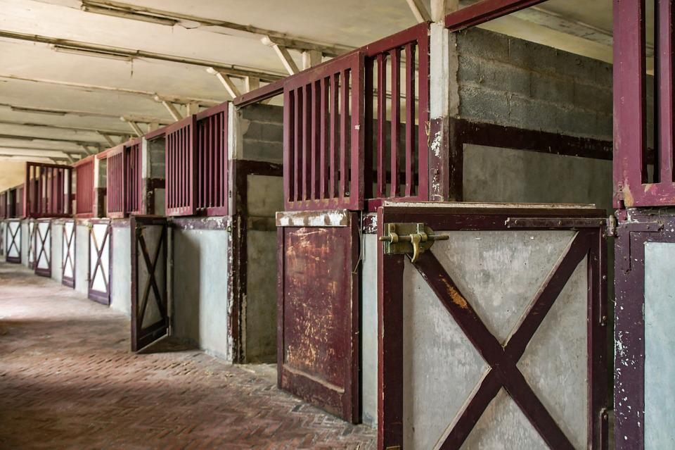 Stable, Box, Horseback Riding, Interior, Vacuum
