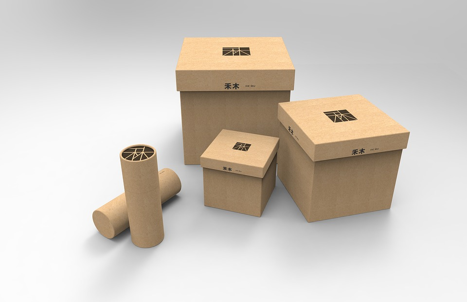 Model, Box, Paper