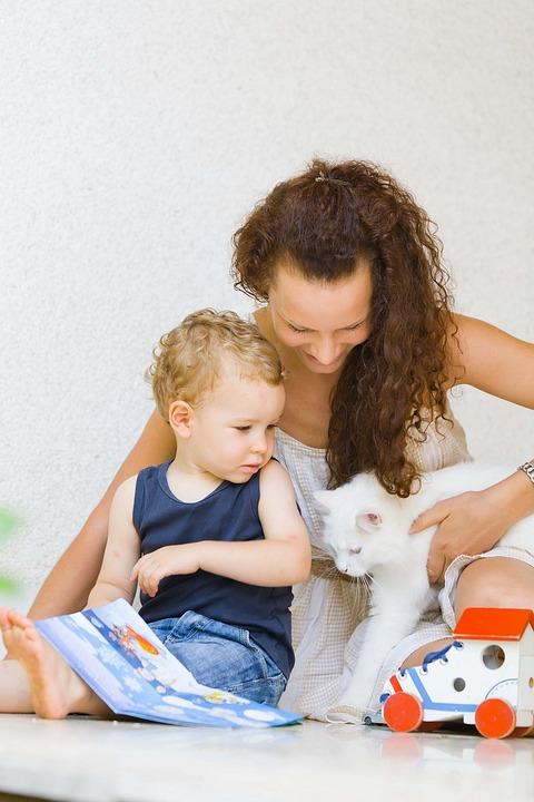 Boy, Cat, Child, Happy, Kid, Cute, Love, People, Animal