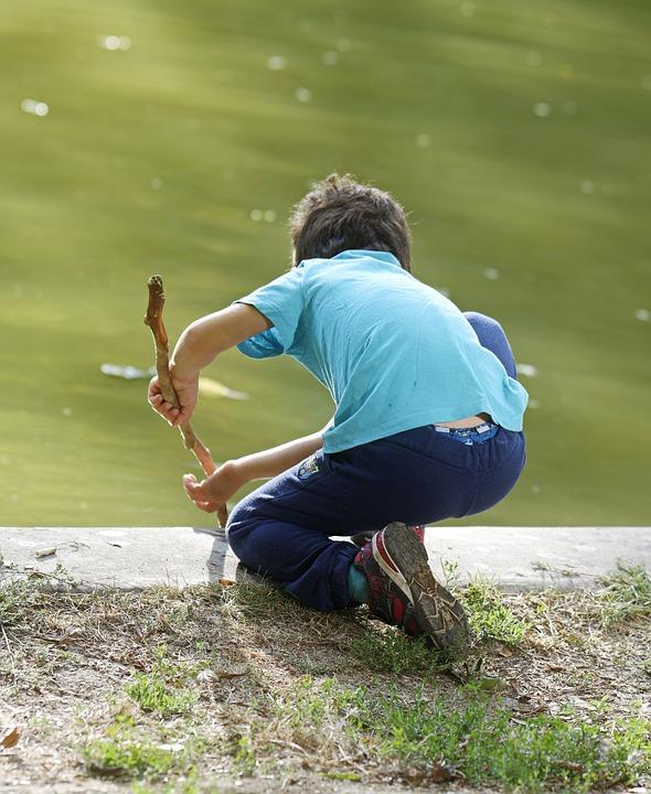 Child, Boy, Mal, Lake, Water, Play, Stick, Branch