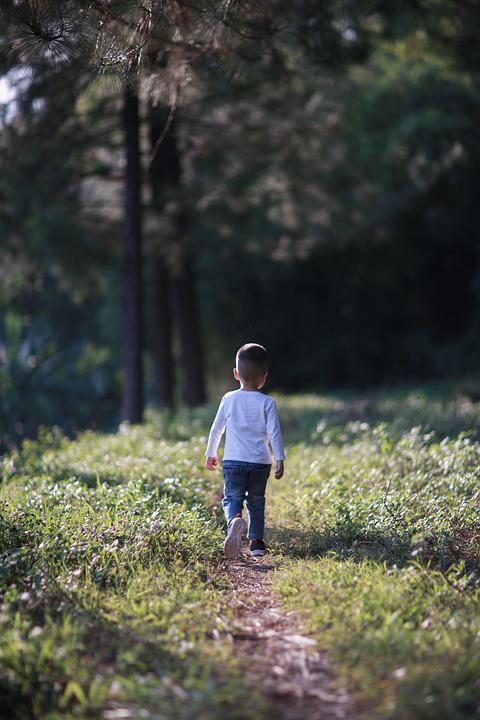 Boy, Kid, Child, Young, Playing, Field, Childhood, Play