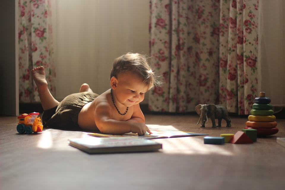 Book, Light, Story, Boy, Kid, Elephant, Atmosphere