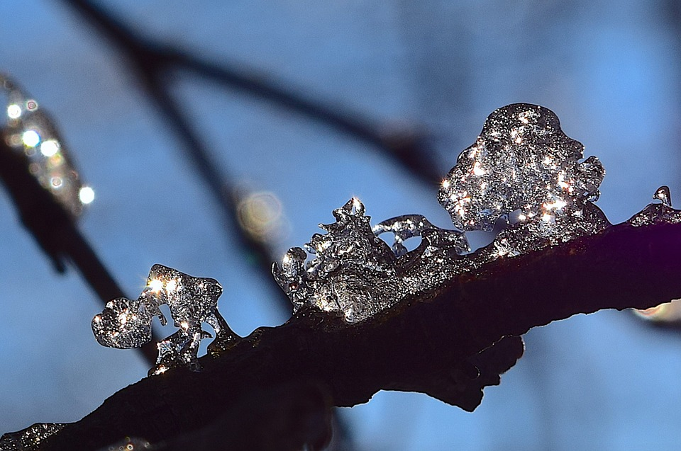 Ice, Crystal, Branch, Winter, Cold, Frost, Frozen