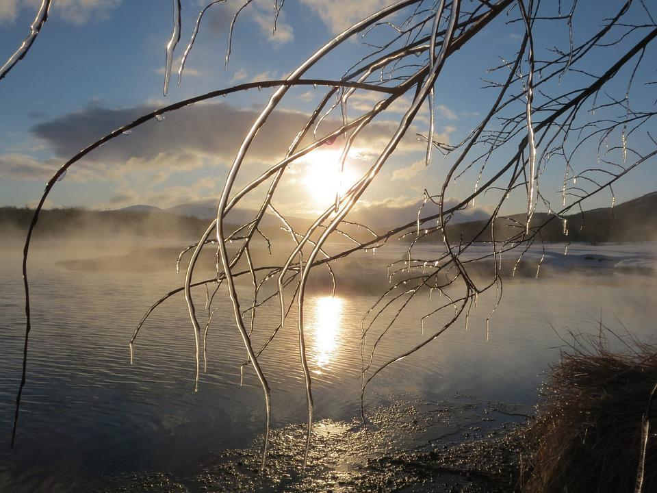 Winter, Lake, Ice, Frazil, Branch, Snow, Icicles