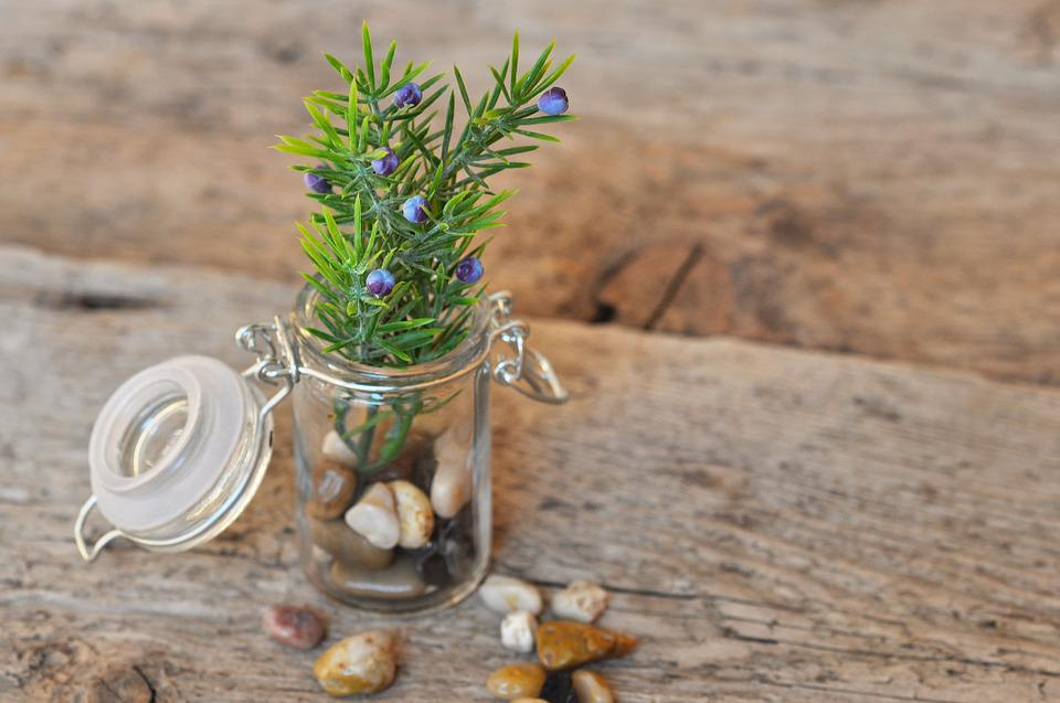 Deco, Glass, Jar, Stones, Branch, Artificial Flowers