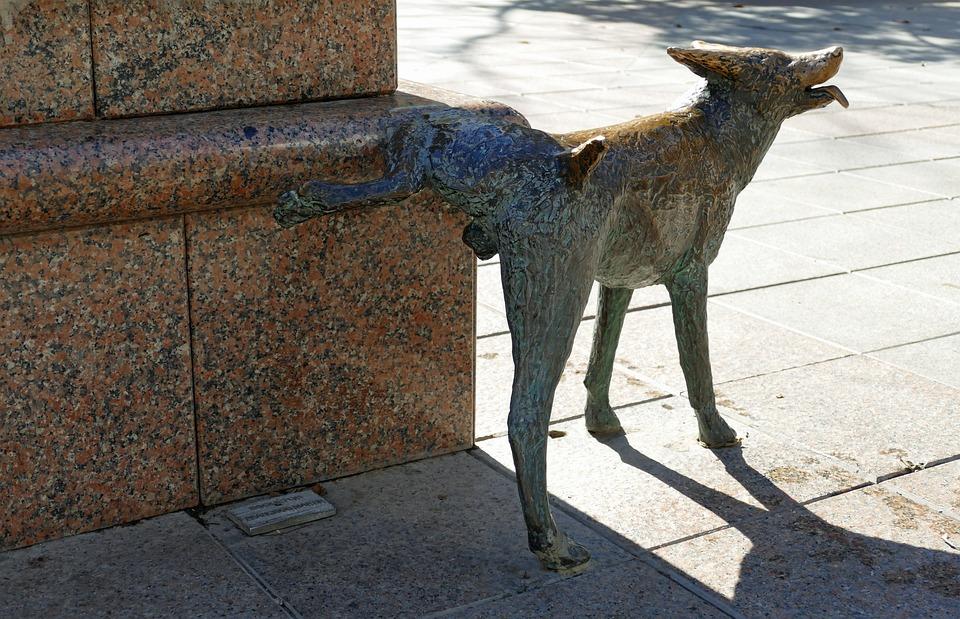 Statue, Image, Dog, Pee, Leg, Brass, Art, Decoration