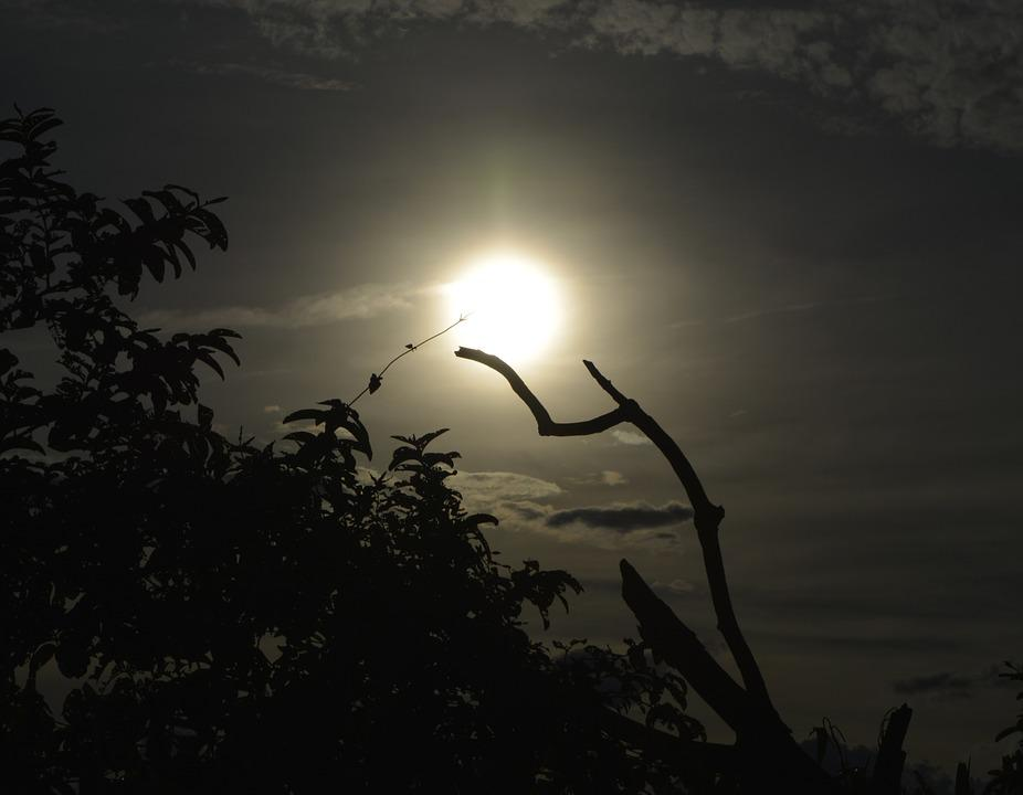 Sunset, End Of Afternoon, Eventide, Sol, Nature, Brazil
