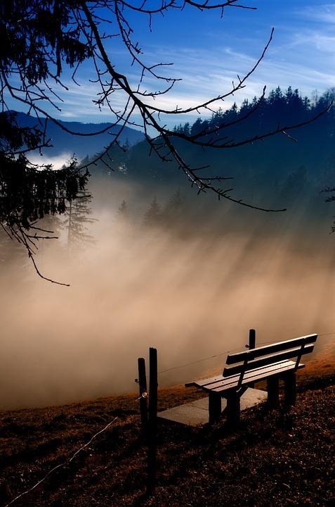 Fog, Blue, Break, Morgenstimmung, Nature