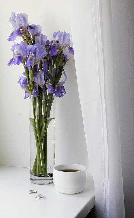 Morning, Breakfast, Coffee, Drinks, Irises, Flowers