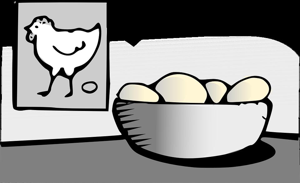 Eggs, Food, Chicken, Hen, Breakfast, Protein