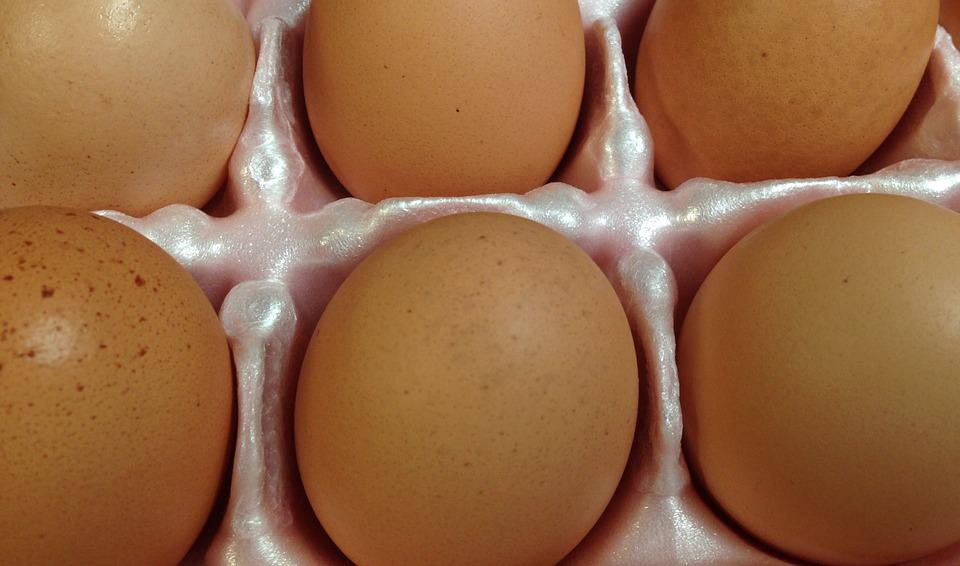 Eggs, Brown Eggs, Chicken, Organic, Shell, Breakfast
