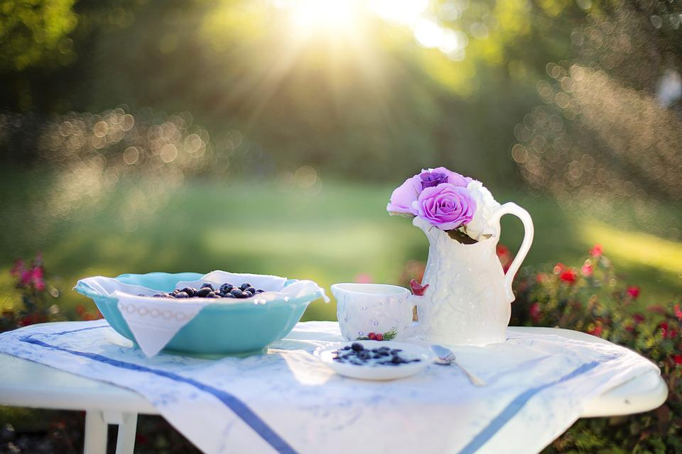 Blueberry, Breakfast, Sunlight, Food, Dessert, Snack