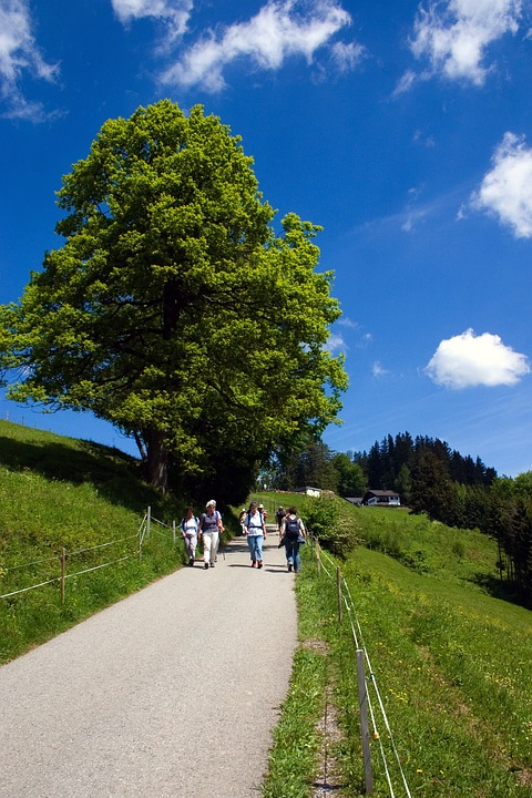 Away, Bregenz, Hiking