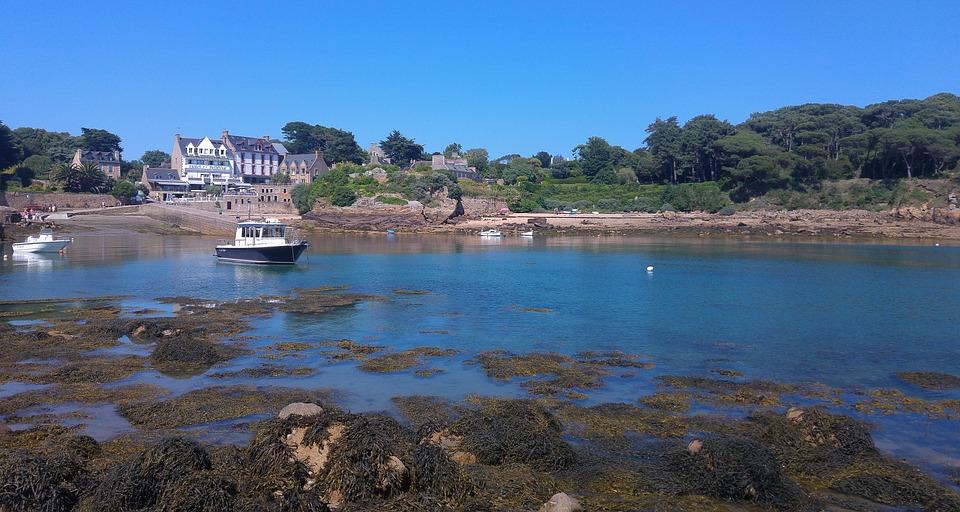 Brittany, Island, Bréhat, Port, Algae, Tide