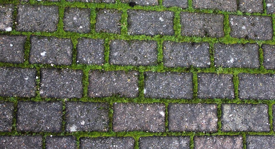 Driveway, Brick, Stone, Grass, Moss, Weeds, Cobbled