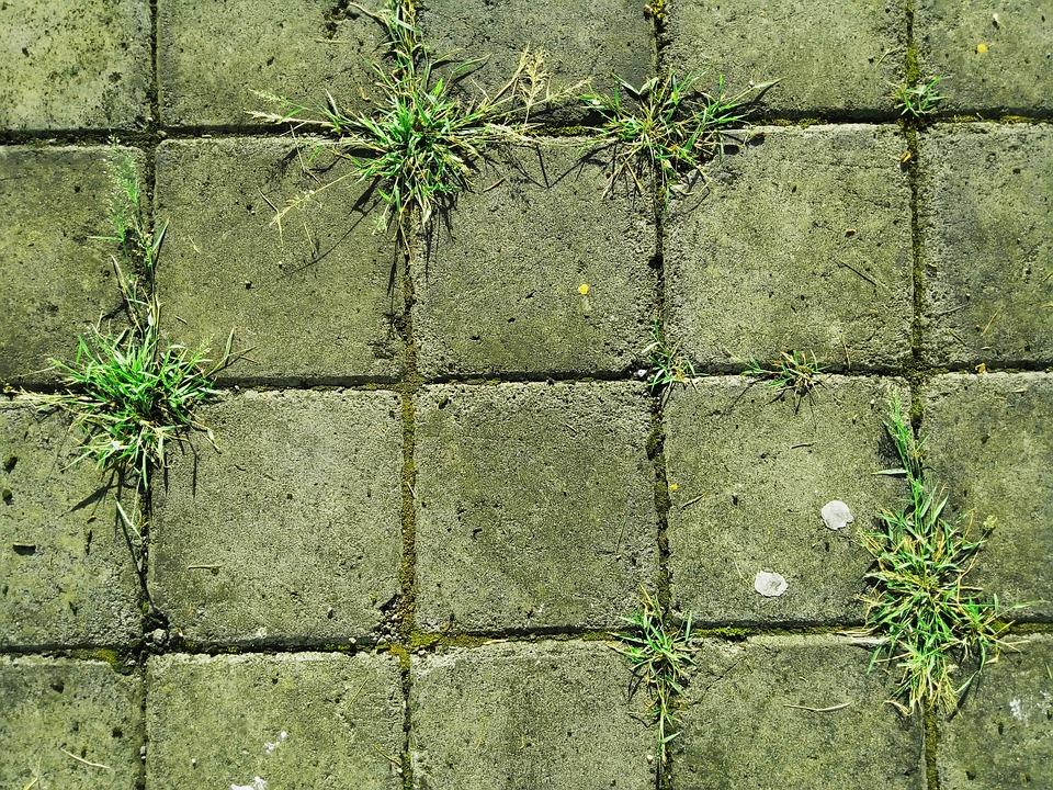 Brick, Ground, Grass, Stone, Brown