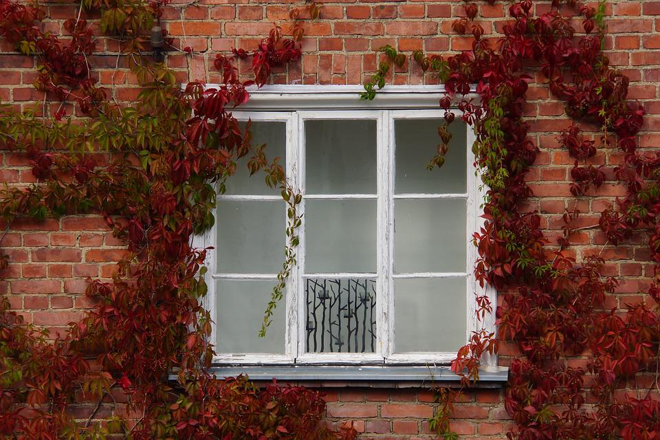House, Window, Architecture, Brick, Old, Building