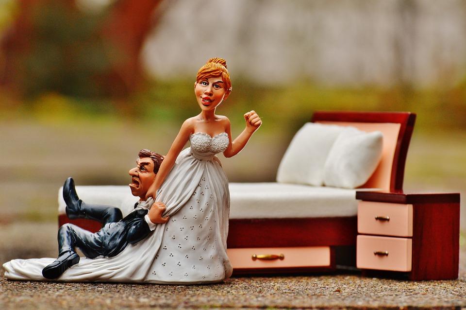Wedding Night, Bride, Groom, To Force, Panic, Figure