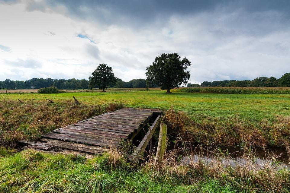Lane, Bridge, Bach, Landscape, North, Lower Saxony