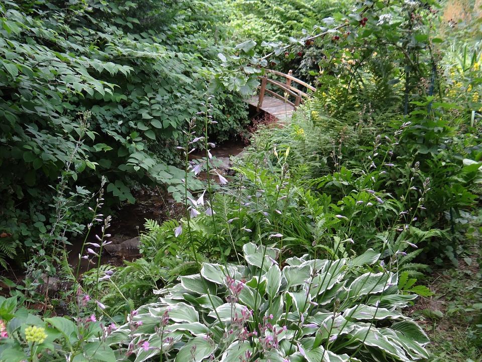 Bridge, Garden, Bach, Bridge Brook