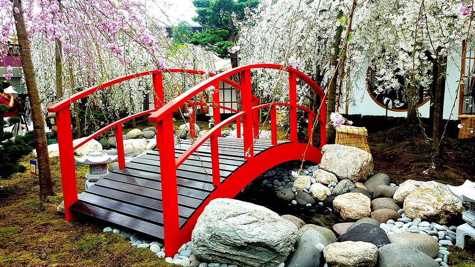bridge cherry blossom landscape sakura japan - Japanese Garden Cherry Blossom Bridge