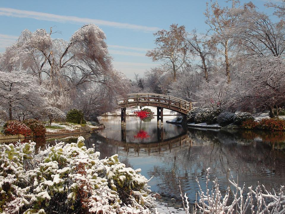 Bridge, Winter, Landscape, Snow, Outdoor, Cold, Scenery
