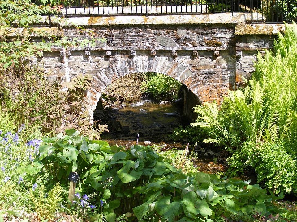 Bridge, Railings, Stone, Arch, Vegetation, Ferns, Water