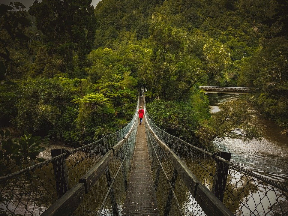 Bridge, Swing Bridge, Person, Red, Green, New Zealand