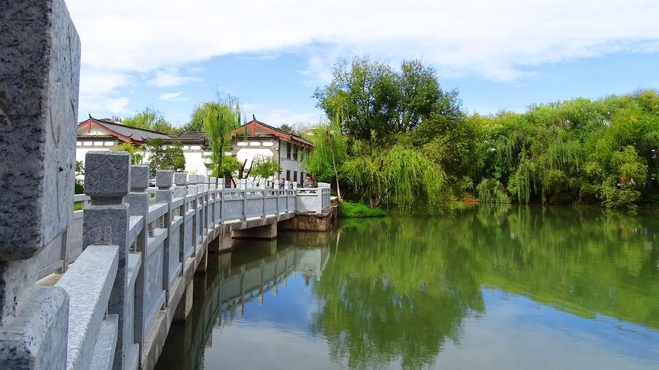Tree, Reflection, Bridge, Sky, Symmetry