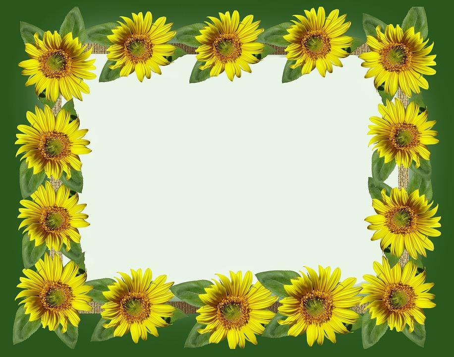 Free photo Bright Flora Frame Sunflower Summer - Max Pixel