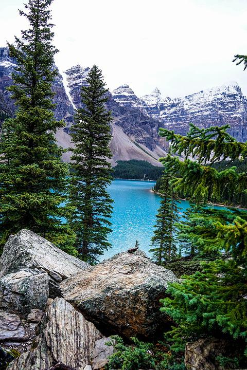 Lake, Forest, Stone, Brine, Landscape, Bergsee, Idyllic