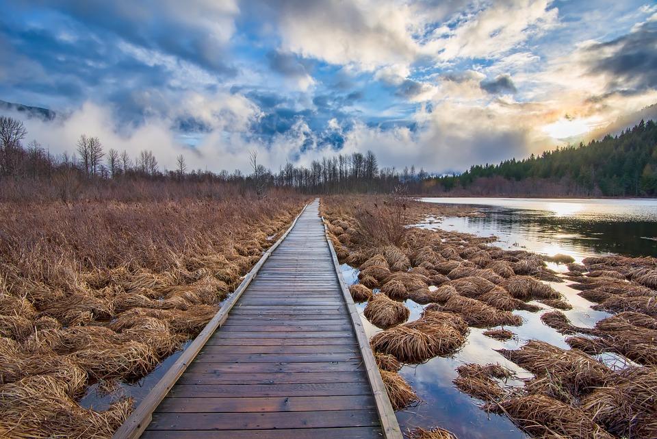 Beautiful, Bright, British Columbia, Canada, Cloud
