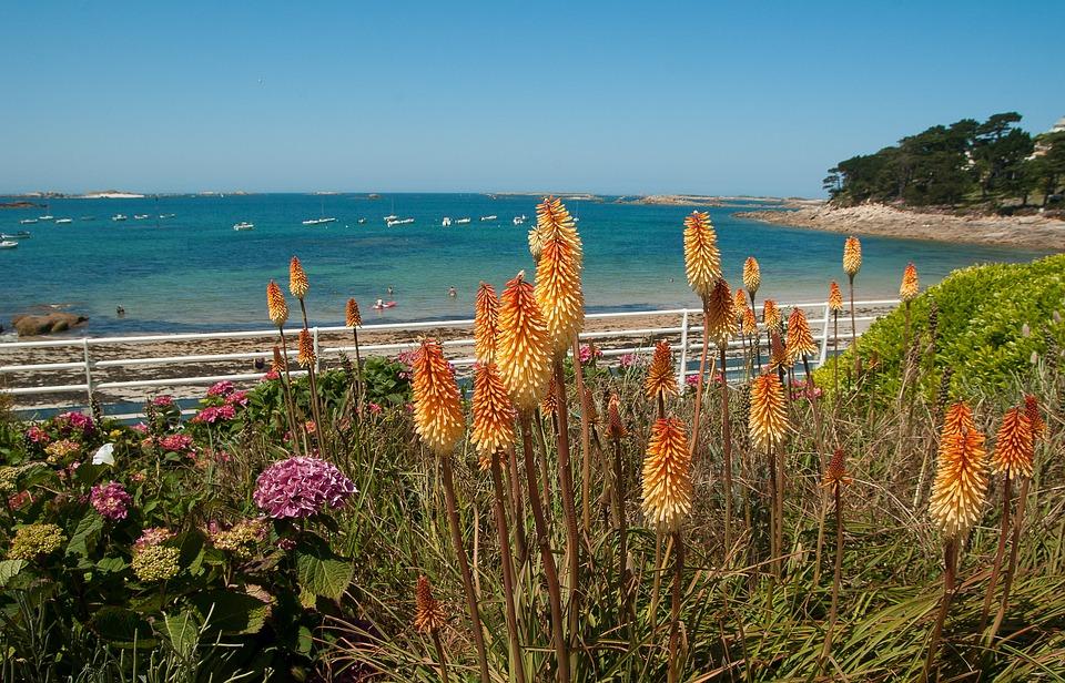 Brittany, Beach, Bay, Tritome