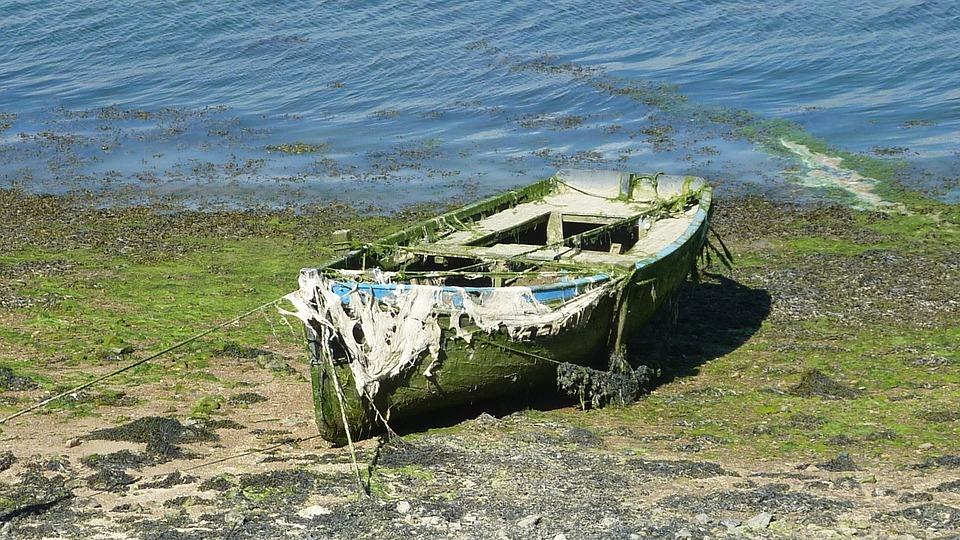 Boat, Brittany, Sea, Alga