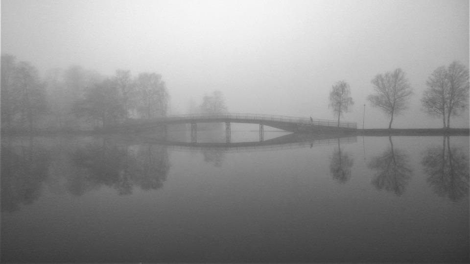 Foggy, Mist, Water, Bro, Autumn, Morning, Still
