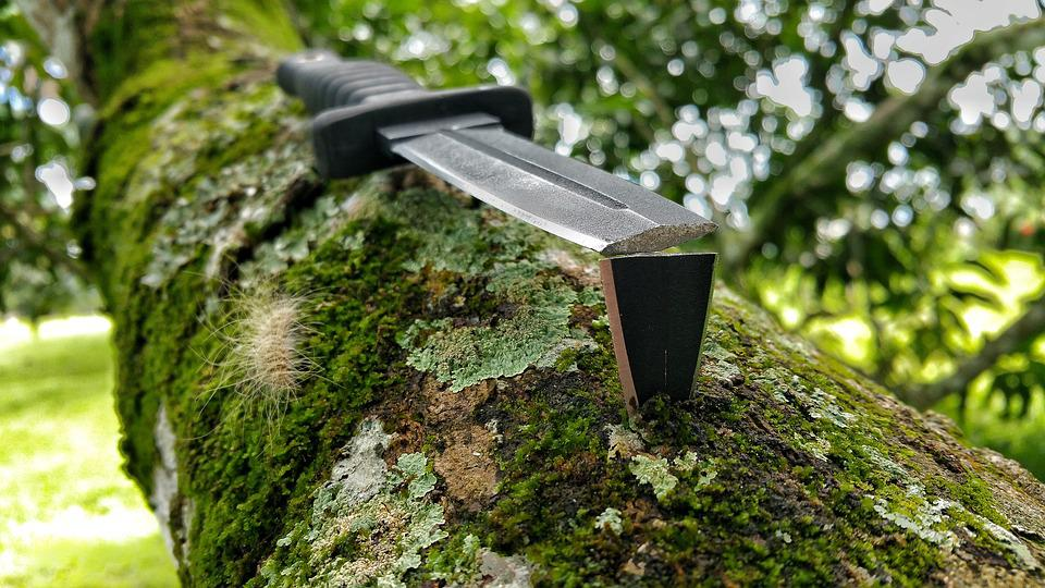 Broken, Knife, Blade, Black, Boot Knife, Moss, Branch
