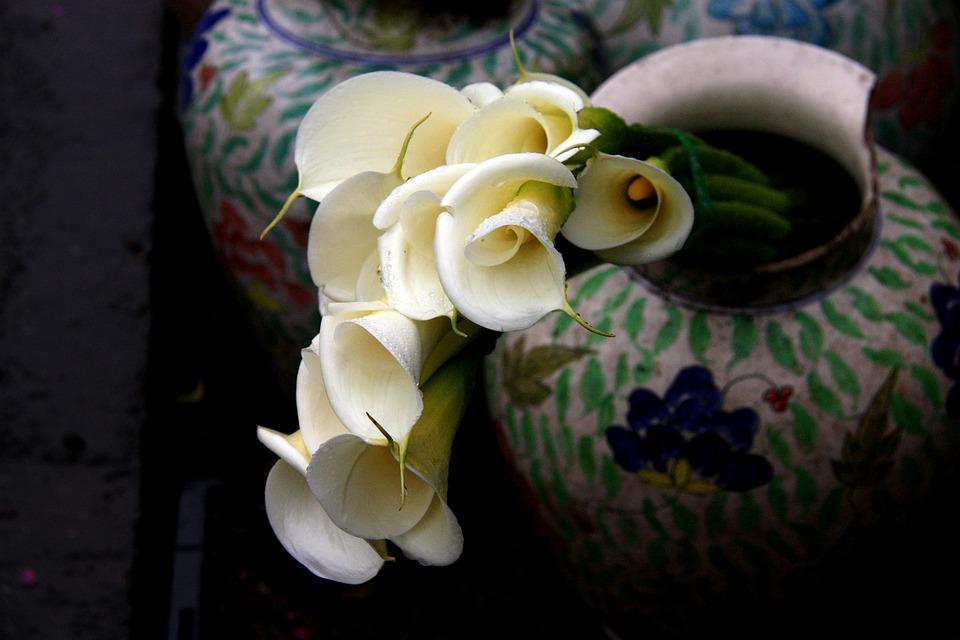 Free Photo Broken Calla Bunch Vase Notch Flower Arrangement Max Pixel
