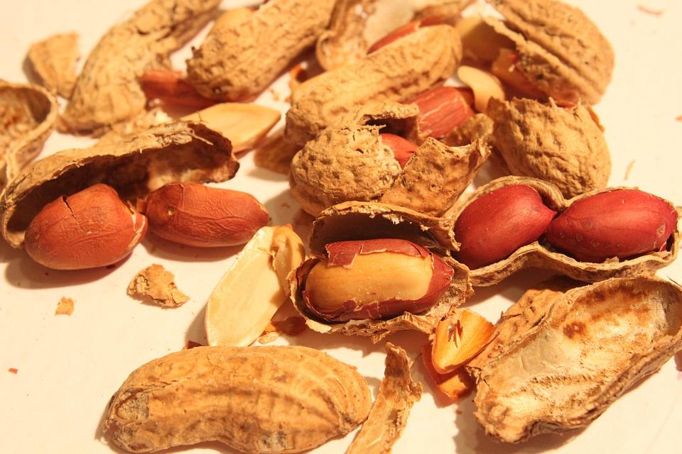 Broken, Peanut, Roasted, Shell, Skin, Smashed, Food