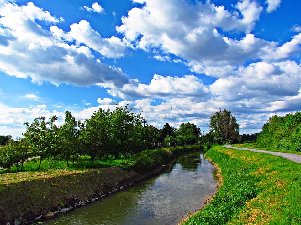 Water, Brook, Field, The Brook, Landscape, Bird, Nature