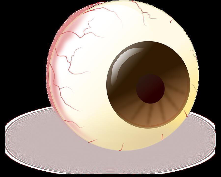 Eye, Eyeball, Brown, Pupil, Iris, Closeup