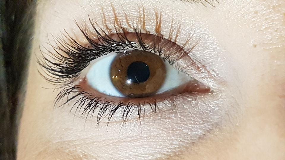 Eye, Close Shooting The Eye, Long Eyelashes, Brown Eyes