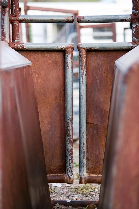 Gate, Brown, Entrance, Old, Door, Texture, Iron