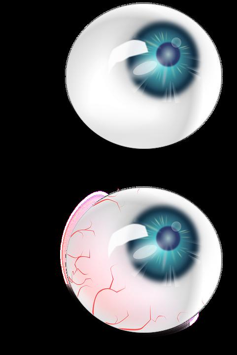 Eyeball, Anatomy, Red, Veins, Blue, Brown, Eye, Human
