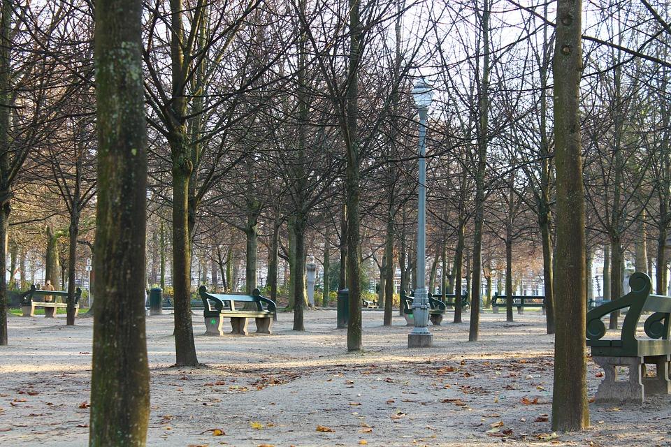 Belgium, Brussels, Winter, Park