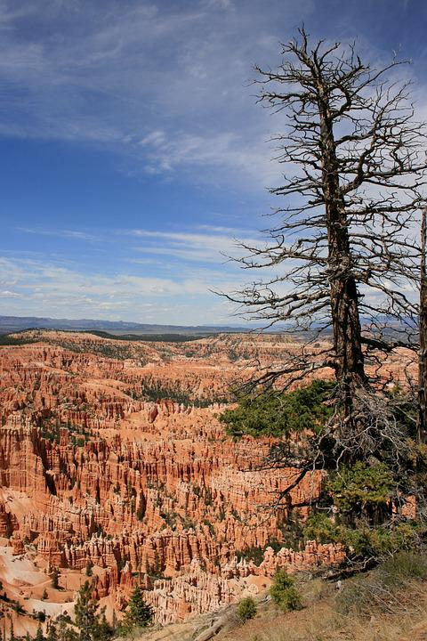 Usa, Bryce Canyon, National Park