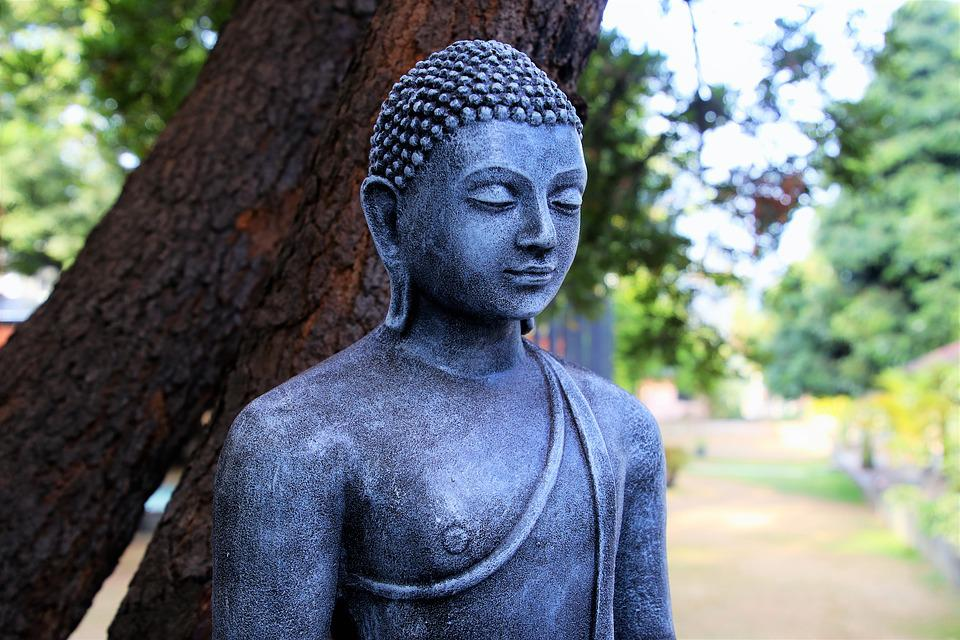 Buddhism, Portrait, Sculpture, Tree, The Statue, One