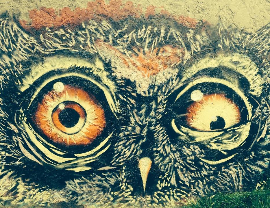 Buho, Animal, Graffiti, Ave, Drawing, Crazy, Art