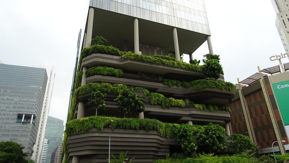 Singapore, Building Curious, Green