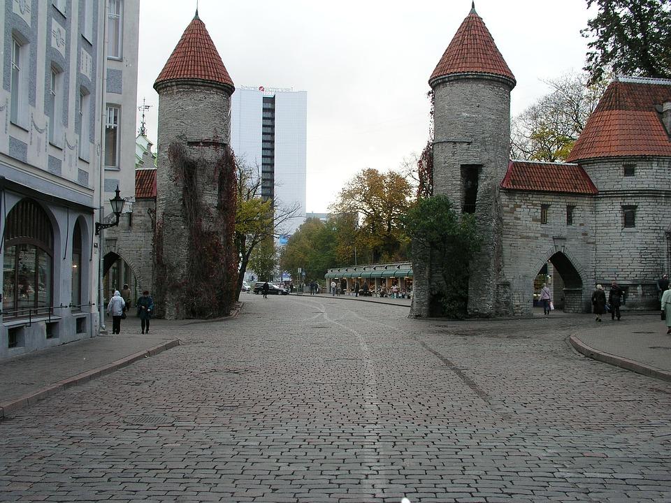 Estonia, Viru, Gate, Old, Wooden, Building, Rural